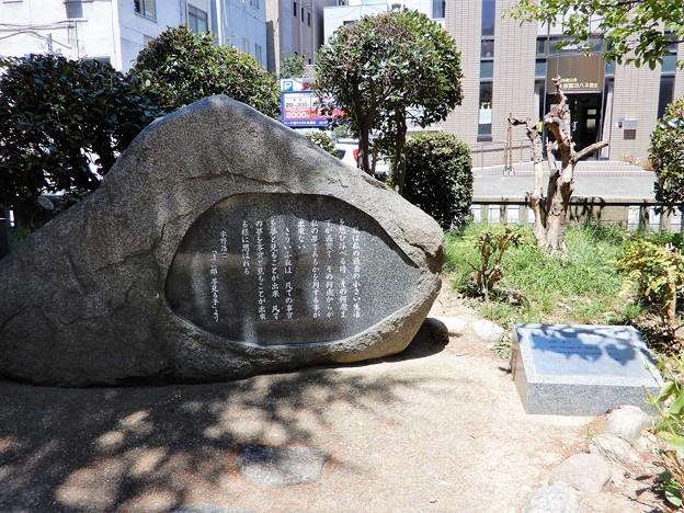 宇野浩二文学碑・中大江公園 (1)