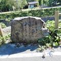 Photos: 26飛鳥川右岸の万葉歌碑 (1)