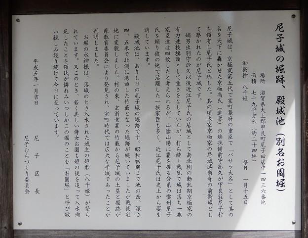 11尼子城の堀跡・殿城池 (1)