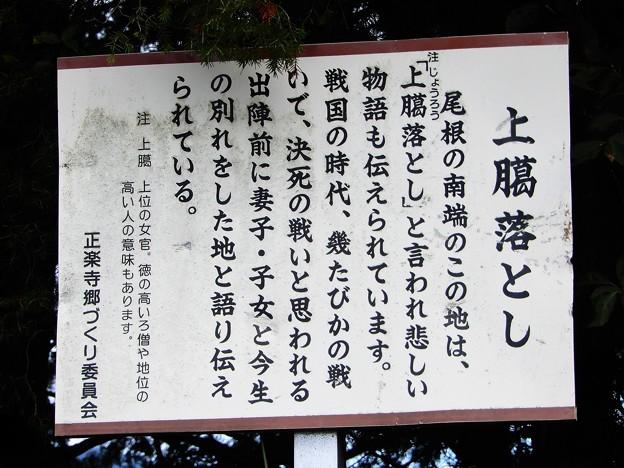 42上臈おとし (1)
