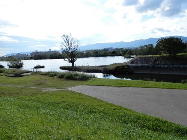 16桂川沿い自転車道 (2)