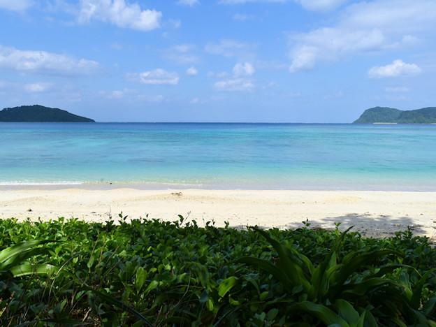 イダの浜2