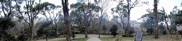 茶臼山山頂から (1)
