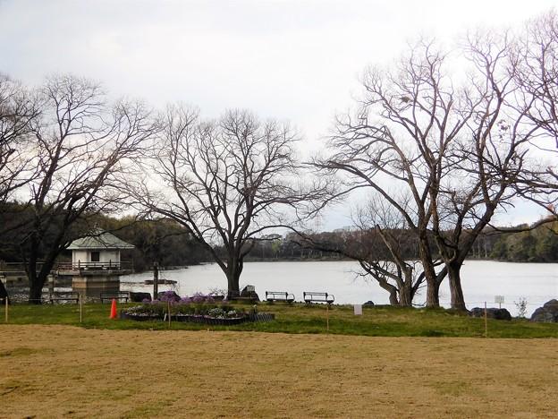 08山田池公園 (1)