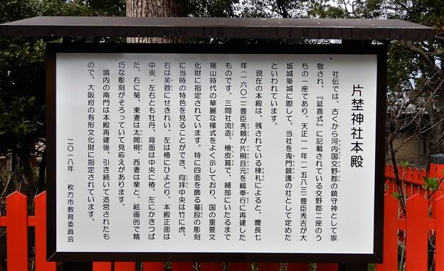 11片埜神社 (4)