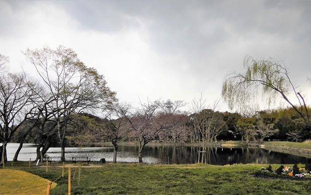 08山田池公園