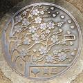 110-0000東京都のマンホール(上野公園)