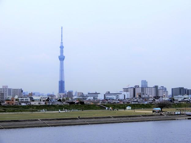 27荒川と東京スカイツリー