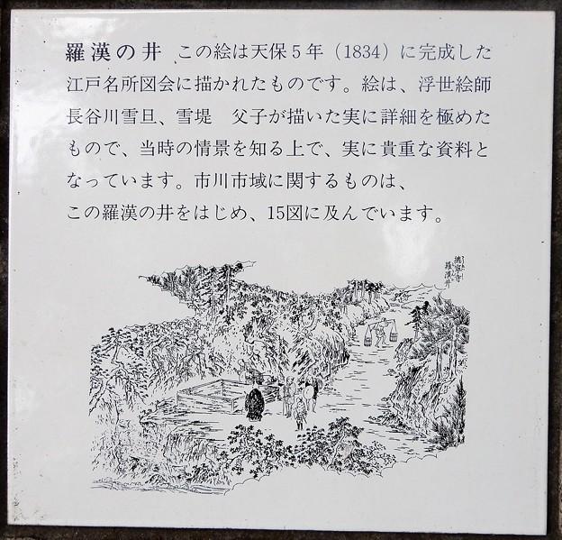 34羅漢の井 (1)