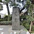 Photos: 51首尾松の碑 (2)