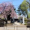 Photos: 14寛永寺