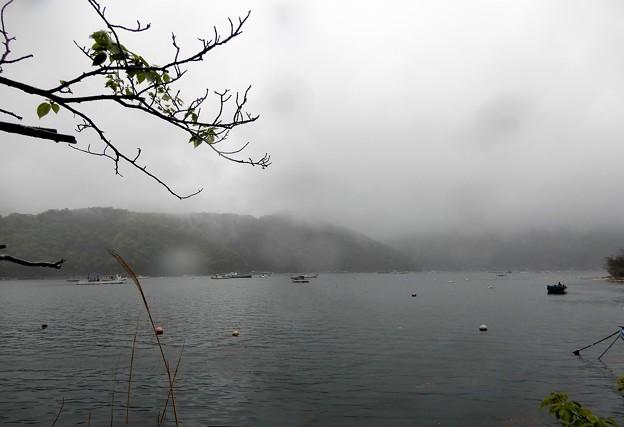 10日向湖 (2)