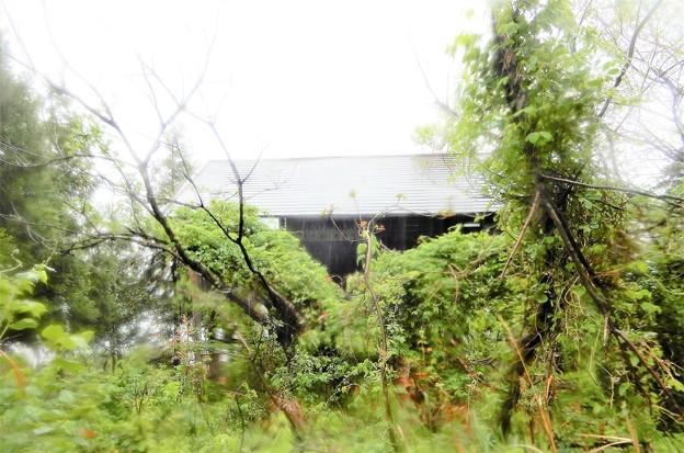 14菅湖畔の野鳥観察舎