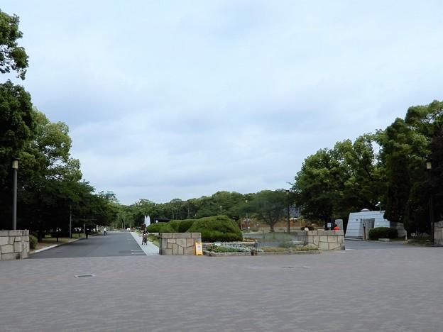 01大阪城公園