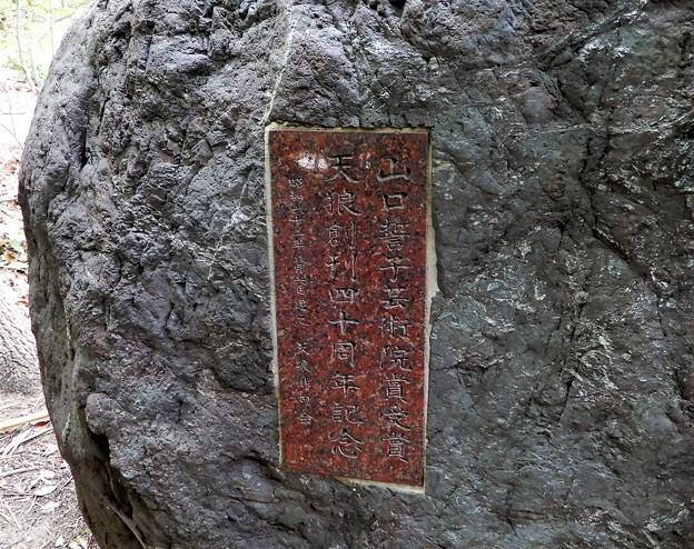 山口誓子句碑(豊国神社境内) (2)