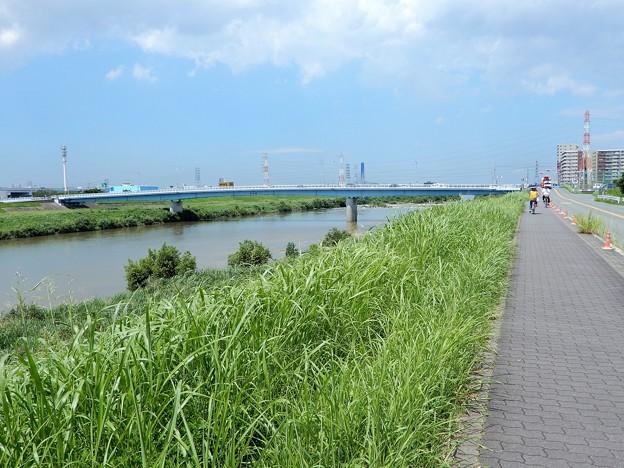 大和川畔 (1)