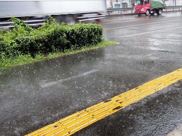 河内中野南交差点付近で雨宿り (2)