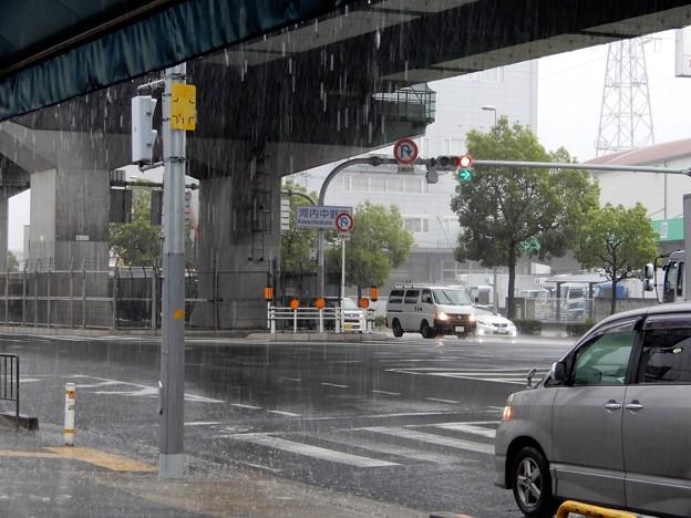 河内中野南交差点付近で雨宿り (3)