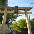写真: 月讀神社 表参道入口の大鳥居