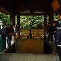 写真: 心身をお清めされる参拝者方々・明治神宮手水舎