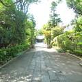 神明社の表参道
