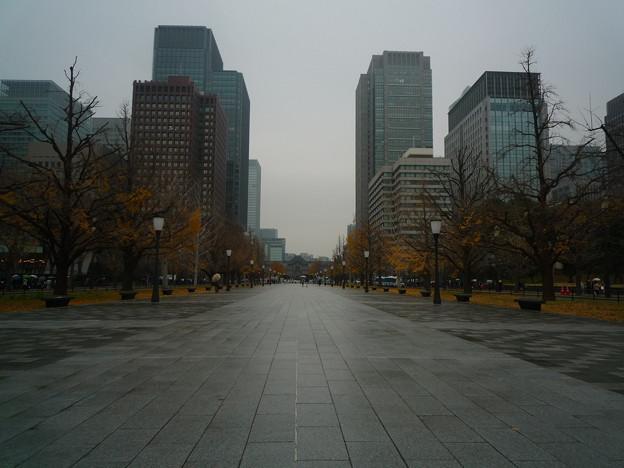 行幸通り(奥に東京駅が見えます