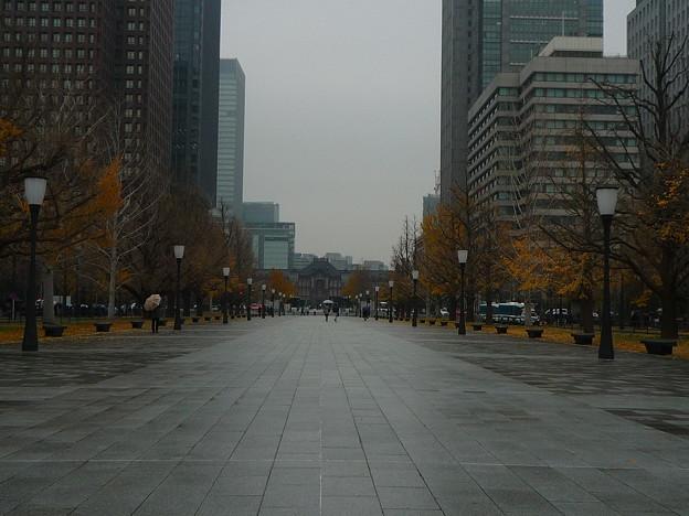 行幸通りから見る東京駅