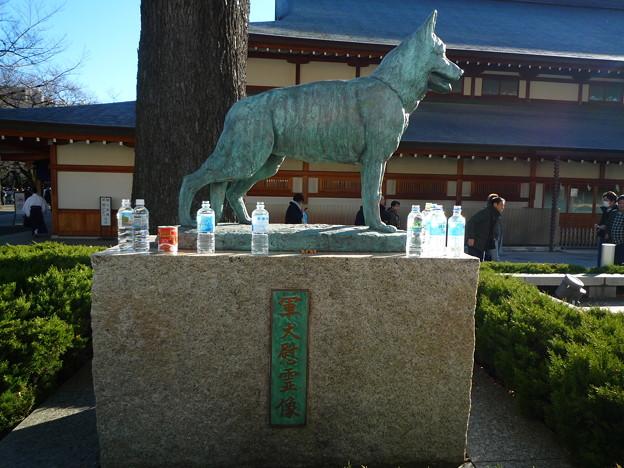 軍犬慰霊碑