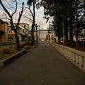 Photos: 深見神社 第一鳥居(参道内側より撮影