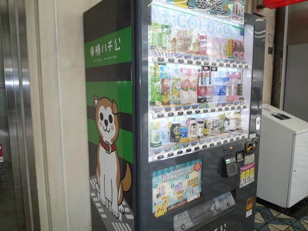 渋谷ならでは、可愛いハチ公絵柄の自動販売機