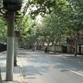 写真: 復興路(1)