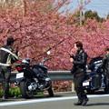 Photos: 春のツーリング