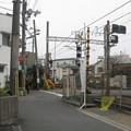 Photos: 金田
