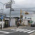 Photos: 木幡