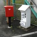 Photos: 勝野のアレ
