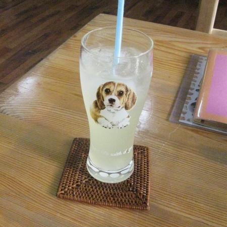 Photos: 柚子汁
