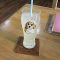 写真: 柚子汁