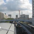 Photos: 中公園