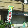 Photos: 光