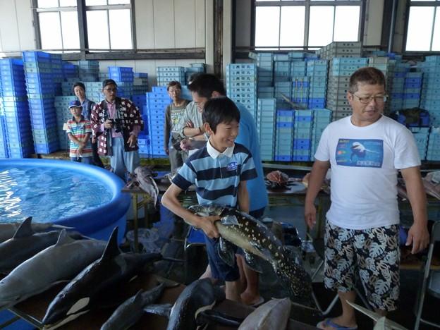 P1050443 大浜漁港 (三河湾大感謝祭会場) (12)