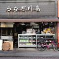 写真: うなぎ川亀さん_0881