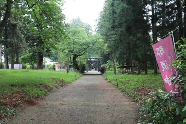 栃木県、那須与一、那須神社IMG_0307
