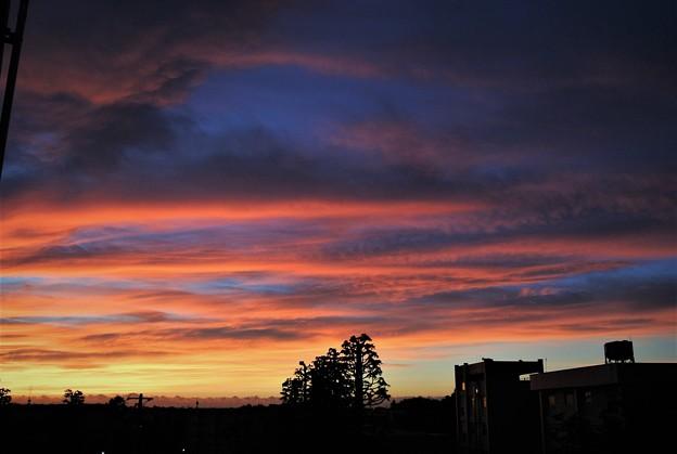 写真: 7月8日ベランダより朝焼け