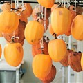 Photos: 今年の干し柿