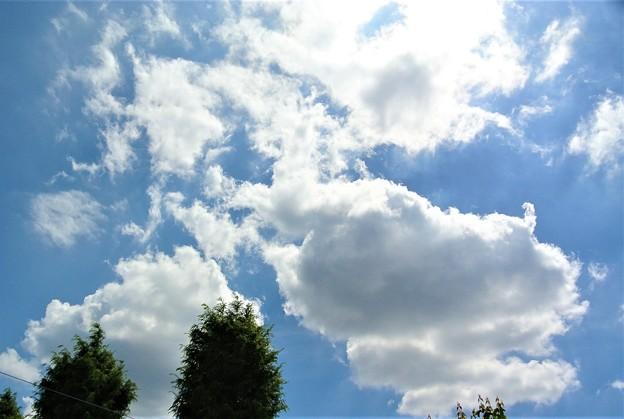 夏の空再び