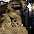 Photos: 皆中稲荷神社08