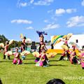 Photos: DSC_8148