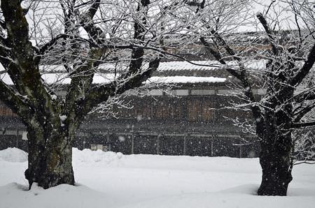 160206雪の降る景色01