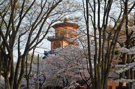 160416霞城公園の郷土資料館