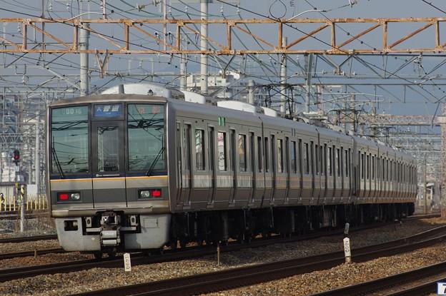 IMGP2705